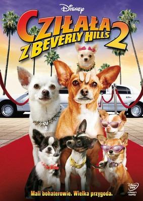 Cziłała z Beverly Hills 2 / Beverly Hills Chihuahua 2