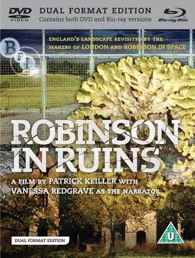 Robinson in Ruins