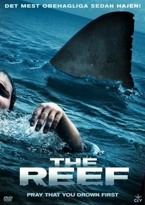 Rafa / The Reef