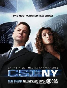 CSI: Kryminalne zagadki Nowego Jorku - sezon 8 / CSI: NY - season 8