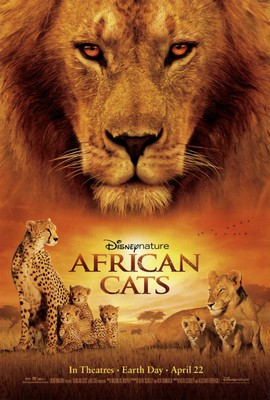 Afrykańskie koty / African Cats