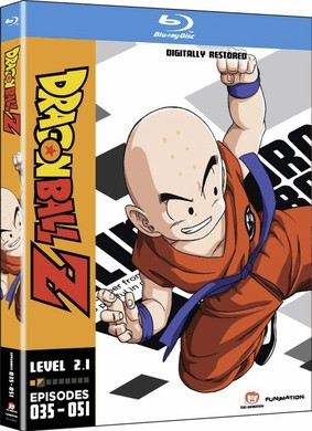 Dragon Ball Z : Level 2.1