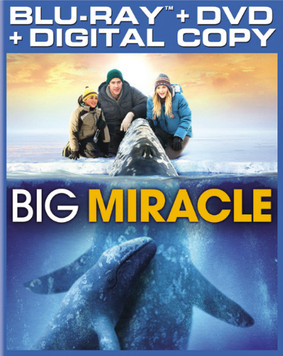 Na ratunek wielorybom / Big Miracle