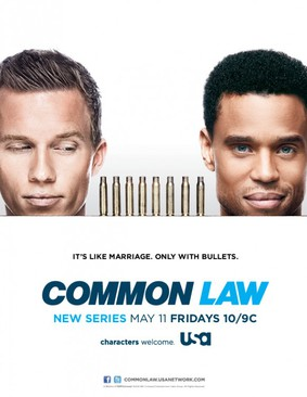 Partnerzy - sezon 1 / Common Law - season 1