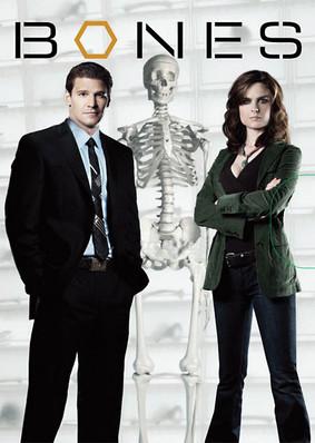Kości - sezon 8 / Bones - season 8