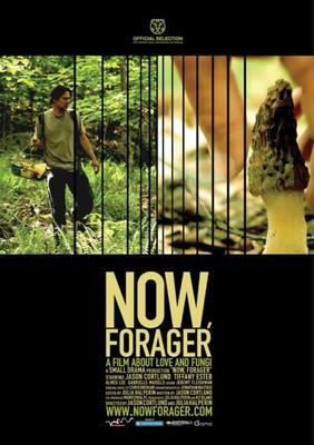 Tam, gdzie rosną grzyby / Now, Forager