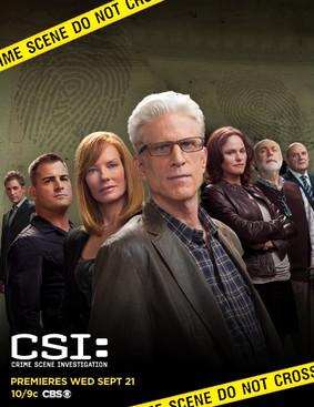 CSI: Kryminalne zagadki Las Vegas - sezon 15 / CSI: Crime Scene Investigation - season 15