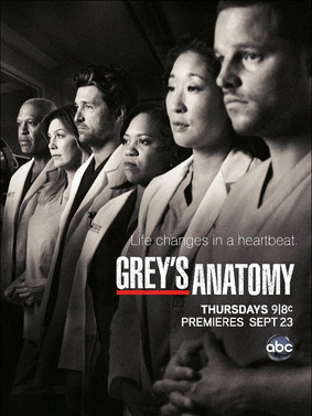 Chirurdzy - sezon 11 / Grey's Anatomy - season 11