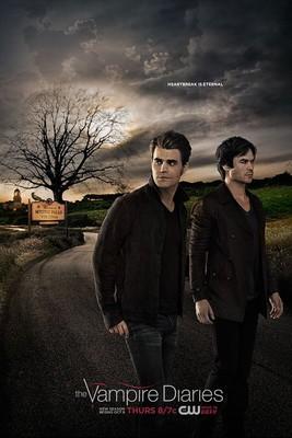Pamiętniki Wampirów / The Vampire Diaries (2016) {SEZON 8} PL.720p.AMZN.WEBRip.XviD.AC3-H3Q / Lektor PL