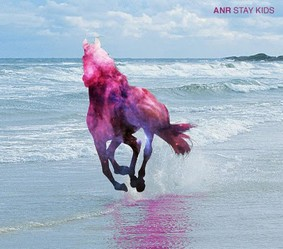 Awesome New Republic - Stay Kids