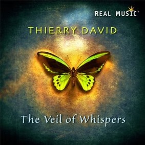 Thierry David - The Veil of Whispers