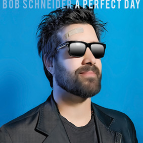 Bob Schneider - A Perfect Day
