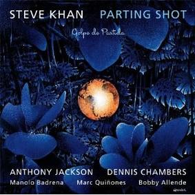 Steve Khan - Parting Shot