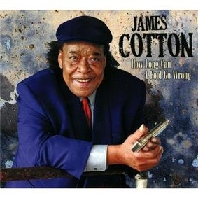 James Cotton - How Long Can A Fool Go Wrong