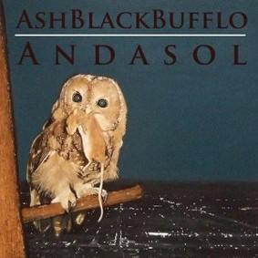 Ash Black Bufflo - Andasol