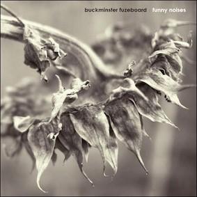 Buckminster Fuzeboard - Funny Noises