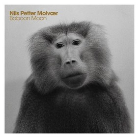 Nils Petter Molvær - Baboon Moon