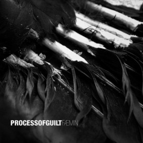 Process Of Guilt - FÆMIN