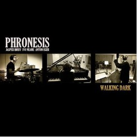 Phronesis - Walking Dark