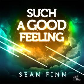 Sean Finn - Such a Good Feeling
