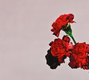 John Legend - Love In The Future