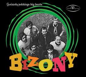 Bizony - Gwiazdy polskiego big beatu