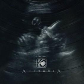 K2 - Anatomia