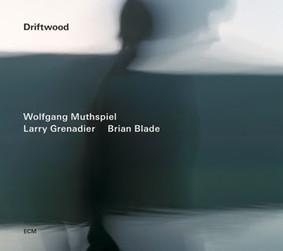 Wolfgang Muthspiel, Brian Blade, Larry Grenadier - Driftwood