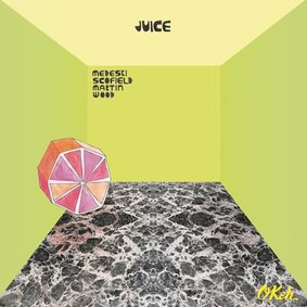 Medeski Martin & Wood - Juice