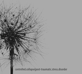 Controlled Collapse - Post Traumatic Stress Disorder