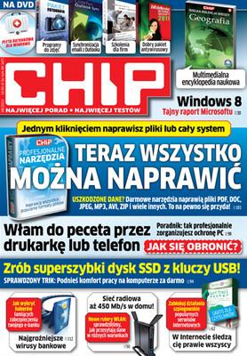 Chip 08/2011