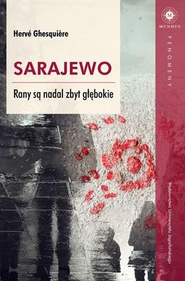 Herve Ghesquiere - Sarajewo. Rany są nadal zbyt głębokie