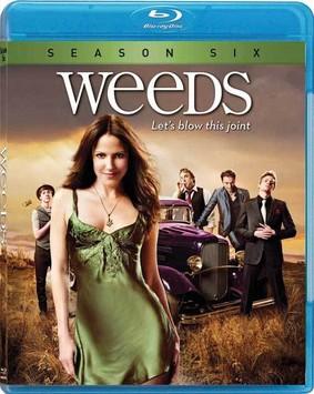 Weeds: Season Six