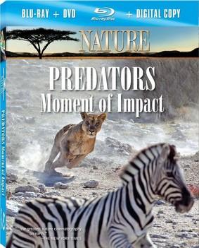 Nature: Predators - Moment of Impact