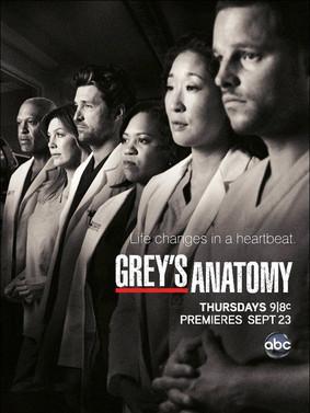 Chirurdzy - sezon 8 / Grey's Anatomy - season 8