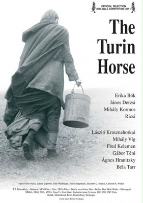 Koń turyński / A Torinói ló