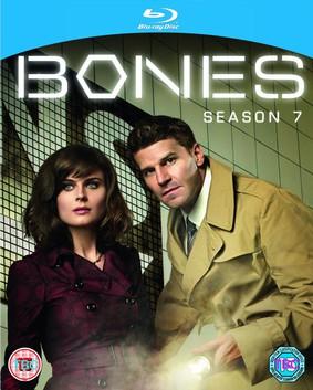 Kości - sezon 7 / Bones - season 7