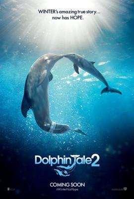 Mój przyjaciel delfin 2: Ocalić Mandy / Dolphin Tale 2