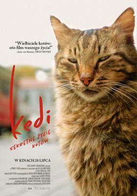 Kedi - sekretne życie kotów / Kedi
