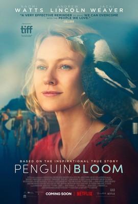 Penguin Bloom: Niesamowita historia Sam Bloom / Penguin Bloom