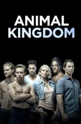 Królestwo zwierząt - sezon 4 / Animal Kingdom - season 4