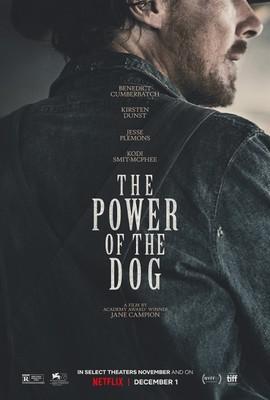 Psie pazury / The Power of the Dog