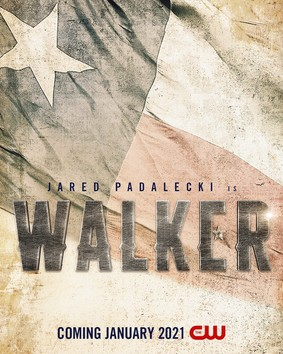 Strażnik Teksasu - sezon 1 / Walker, Texas Ranger - season 1