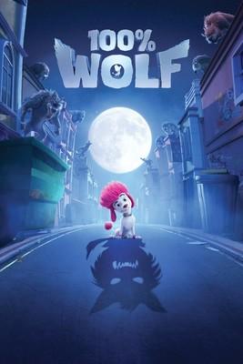 Wilk na 100% / 100% Wolf