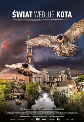 Świat według kota / De Wilde Stad