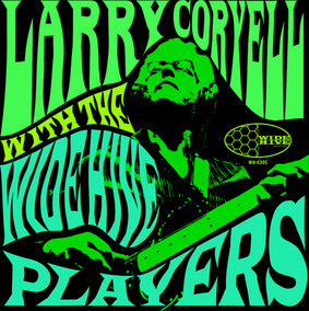 Larry Coryell - With the Wide Hive Players