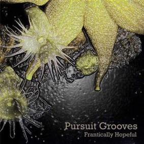 Pursuit Grooves - Frantically Hopeful