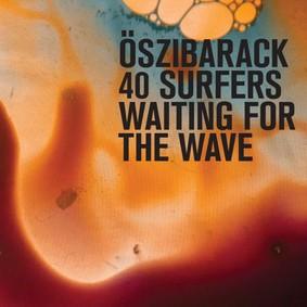 Őszibarack - 40 Surfers Waiting For The Wave