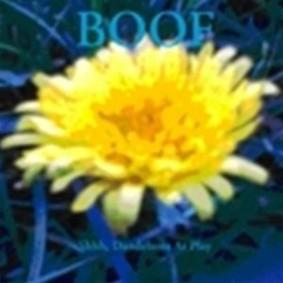 Boof - Shhh, Dandelions At Play