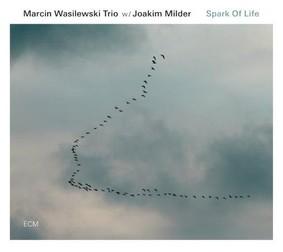 Marcin Wasilewski, Michał Miśkiewicz, Sławomir Kurkiewicz - Spark Of Life